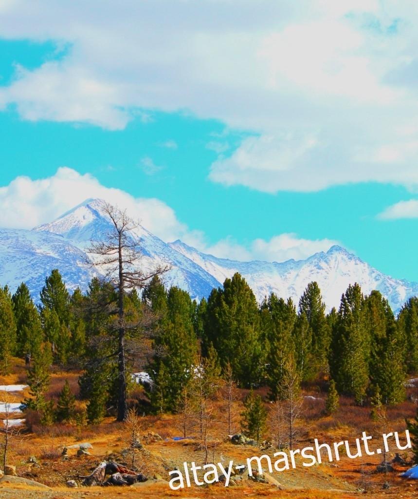 Улаганский перевал