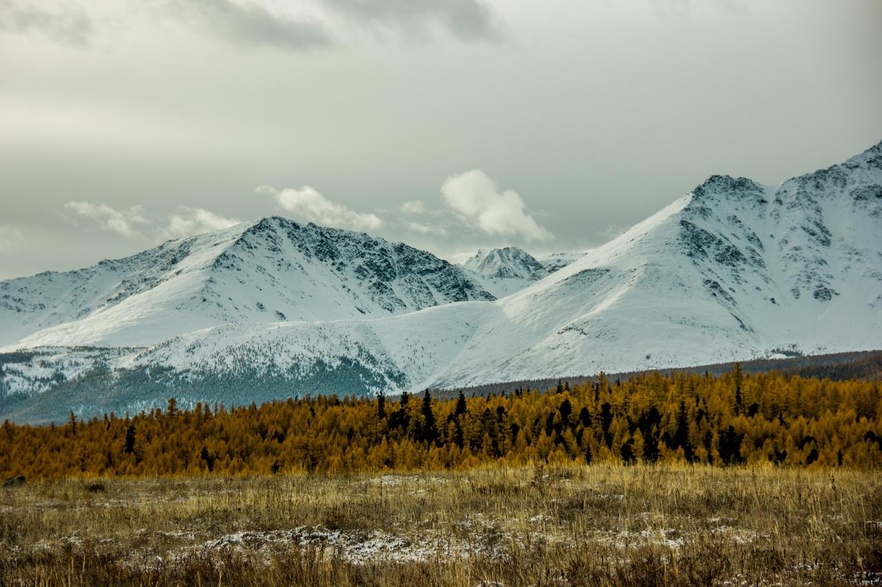 Горы вокруг Белокурихи